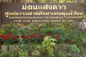 Monsaengdao Aced Thai 01
