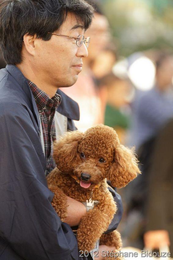 Japon 2011_00175