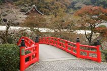 japanese bridge and temple