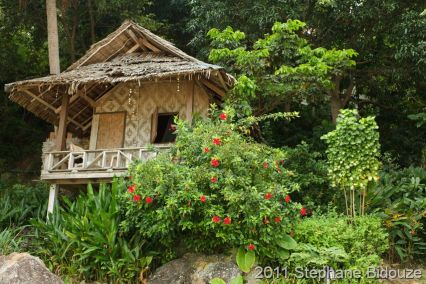 wooden resort in tropical island