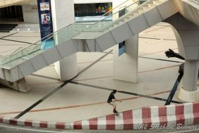 Thailande III_04220