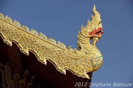 chiang mai047
