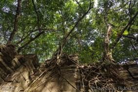 Angkor part IV 19