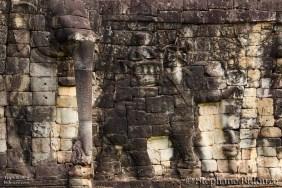 elephant Terrace 1