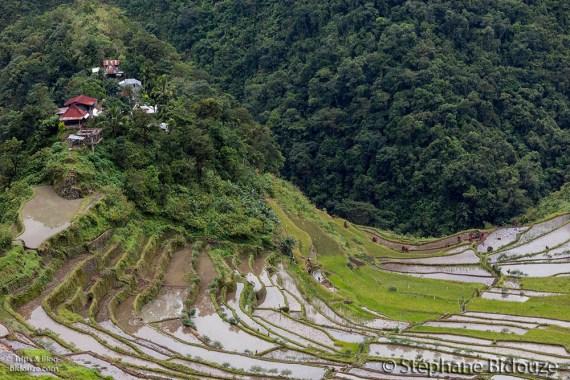 batad-landscape