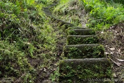 batad-steps-stairs