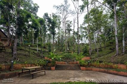 Bandilaan-public-garden