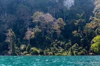 chew-larn-lac-thailande