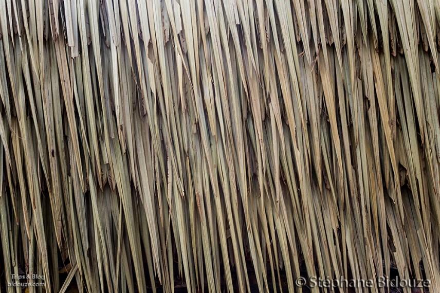 mur-maison-feuille-cocotier