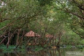 Un tunnel de verdure dans un canal le long du Mékong