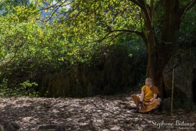 moine-bouddhiste-thailande-arbre-meditation