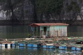 ferme-piscicole-Lan-Ha-baie