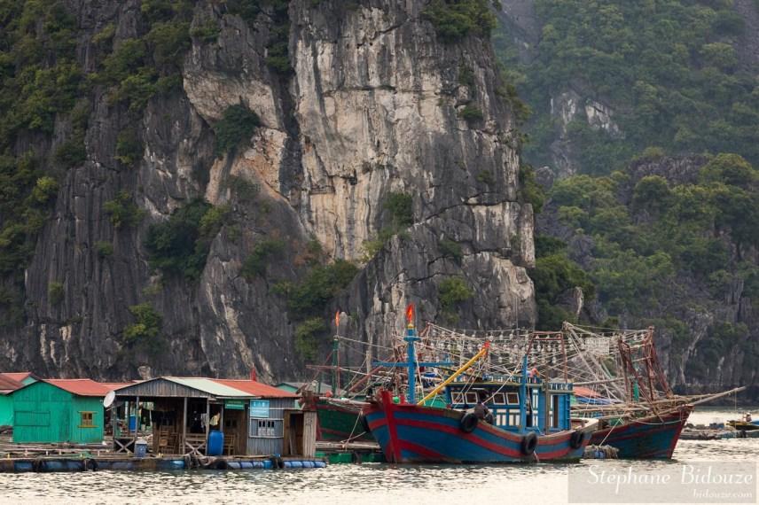 village-pêcheur-cat-ba-ile-vietnam