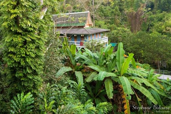 dortoir-maison-temple-jungle-thailande