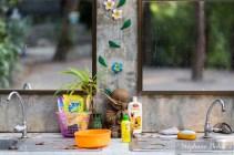 lavabo-thailande-nature