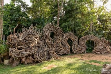 dragon-sculpture-bois-trempé-trang