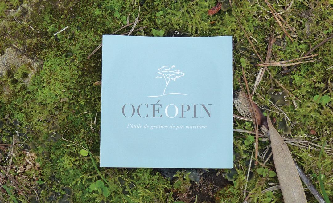 l'huile-de-pin-d'oceopin---bidule-et-cocotte