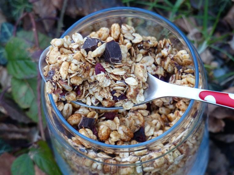 Céréal-fait-maison-au-sucre-de-coco-1