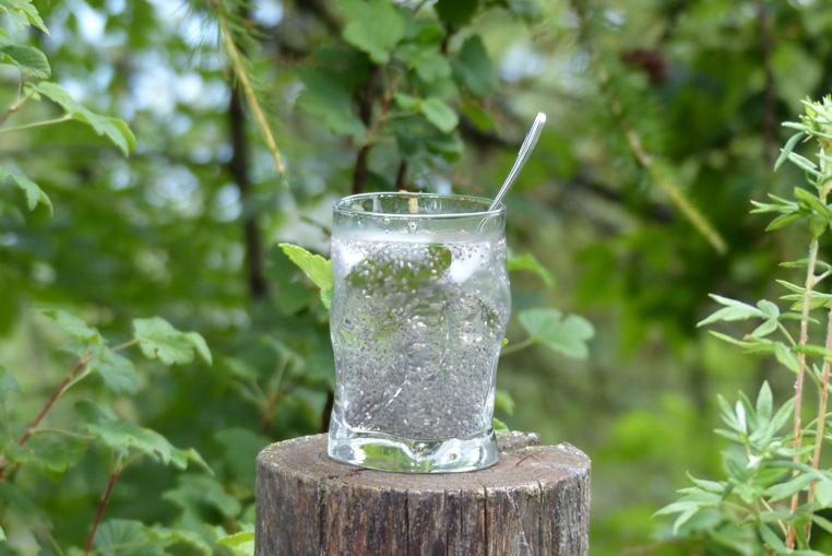 boisson-aux-graines-de-chia-chia-seed-drink