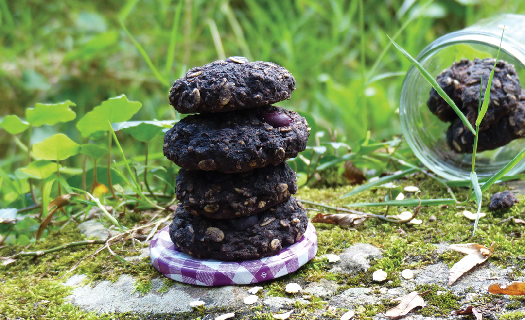 cookie-du-matin-a-la-farine-de-mais-mauve-couv