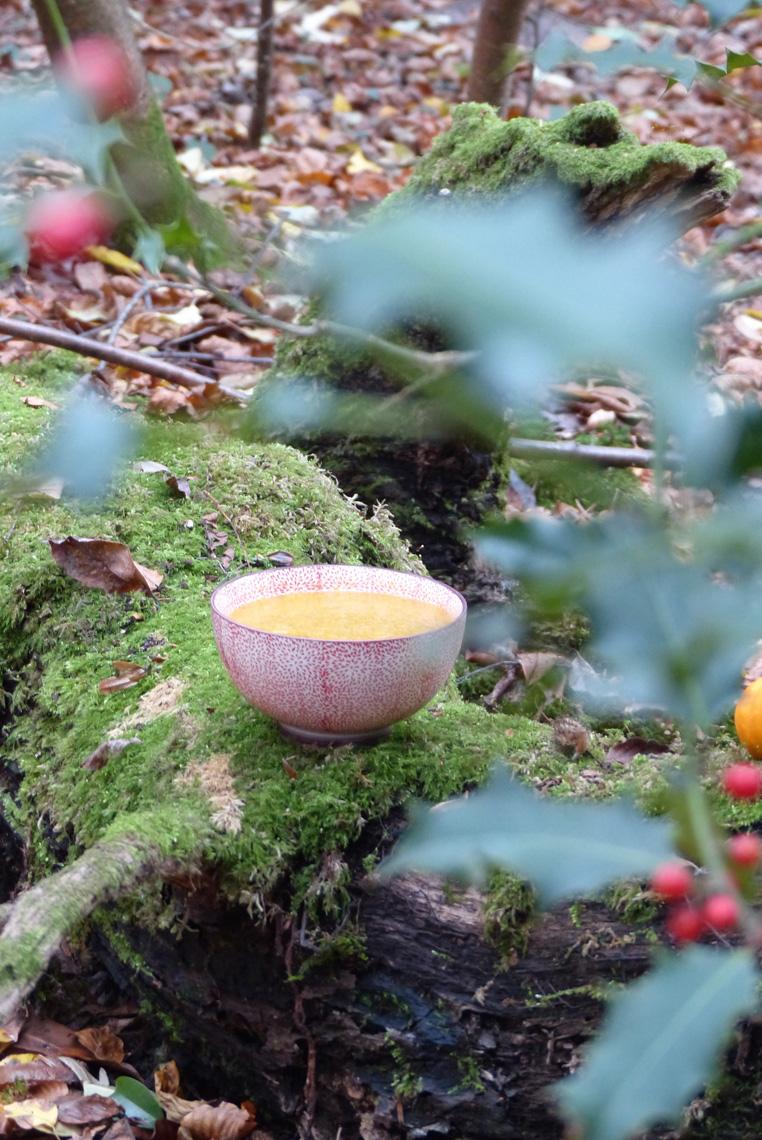 soupe-au-potiron-5
