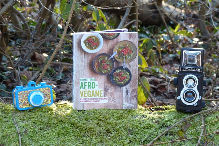 livre-de-cuisine-afro-vegane-1