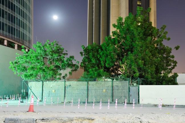 Dubai Night 10