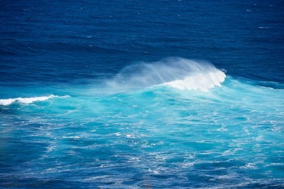 Hawaii 44