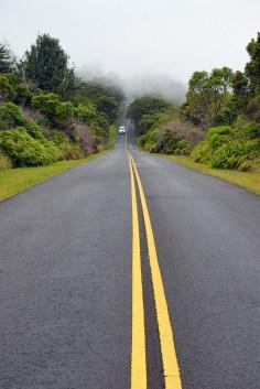 Hawaii 47