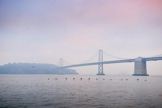 San Francisco 08