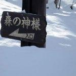 森の神様 [胡桃沢(くるみざわ)]
