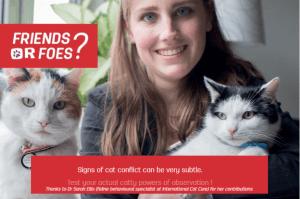 jeu éducatif quizz chats