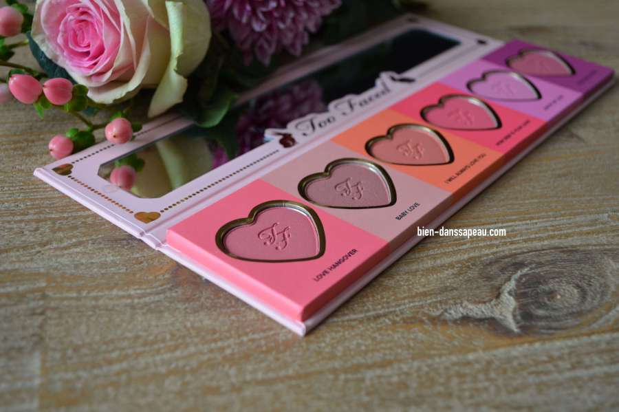 palette-love-flush-too-faced-blush-wardrobe-swatches-3