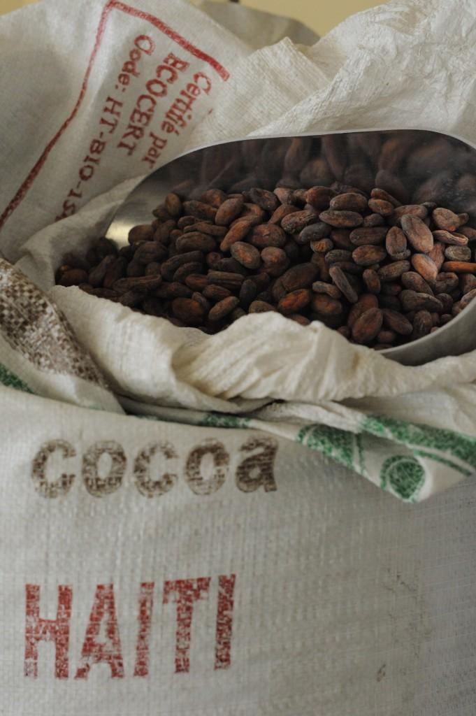 Cacao, business, economic development