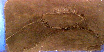 Augusto Canedo 1999 LITORALIDADE Técnica Mista 184 x 126 cm