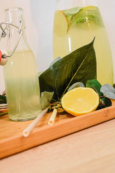 sommerdrink_drink_limette_basilikum-11