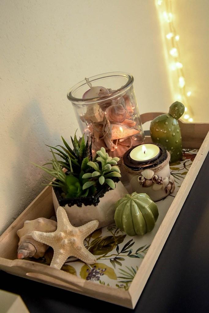 DIY Home Decor- Gips, Muscheln und Sukkulenten