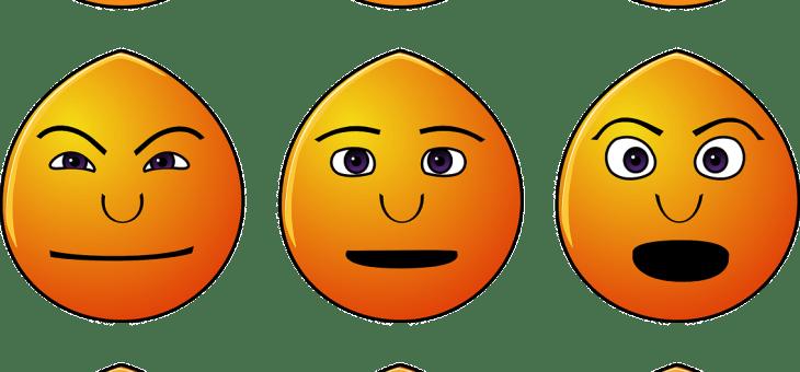 Médecine traditionnelle chinoise 2/4 : les émotions, causes internes de la maladie