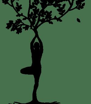 #3. Atelier découverte Shiatsu Do In : Bien vivre son cycle féminin de la puberté à la ménopause