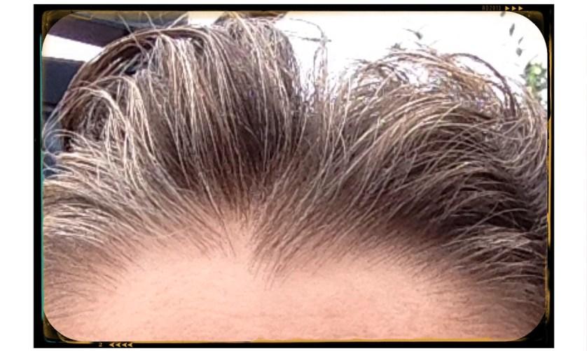 Avant Cheveux blancs