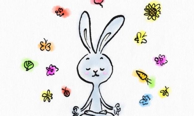 Guide : quel style de yoga choisir  ?  Partie 1