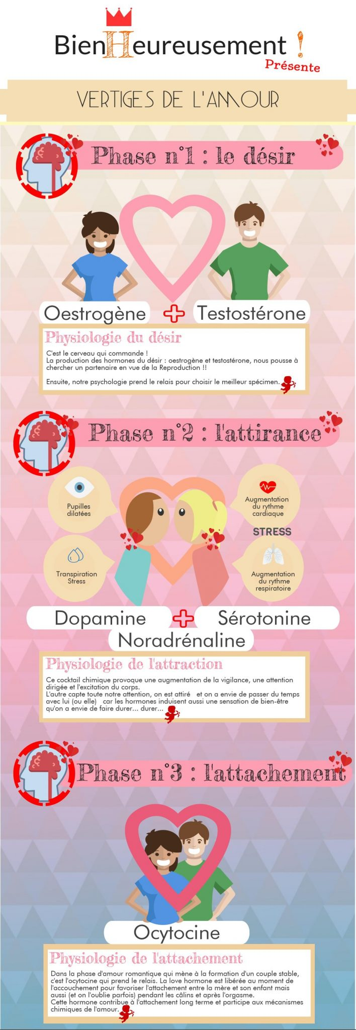 Infographie-mecanismes amour