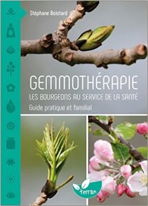 Gemmothérapie