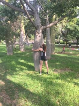 Hugging a Ceiba tree!