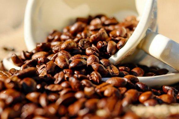 katchouk-cafe-dans-tous-ses-etats