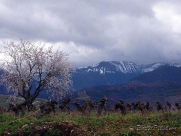20070503_1280797687_el_morredero_en_invierno