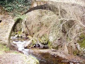20070519_1196649153_23_-_puente_grande_puentes_del_mal_paso