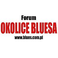 VIII ankieta Forum Okolice Bluesa 2014