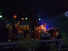 bies_czad_blues_2014_parrot_47