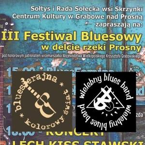 III Festiwal Bluesowy w Skrzynkach